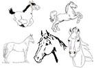 Pferdemalvorlagen