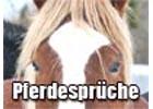 Sprüche über Pferde
