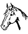 Kopf eines Pferdes zum Ausdrucken