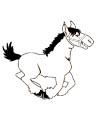 Lustiges Pferd Malvorlage im Comic Stil