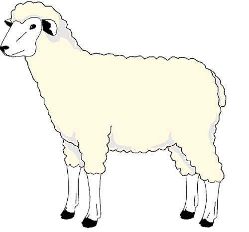 Schaf Malvorlage zum Ausdrucken für Kinder