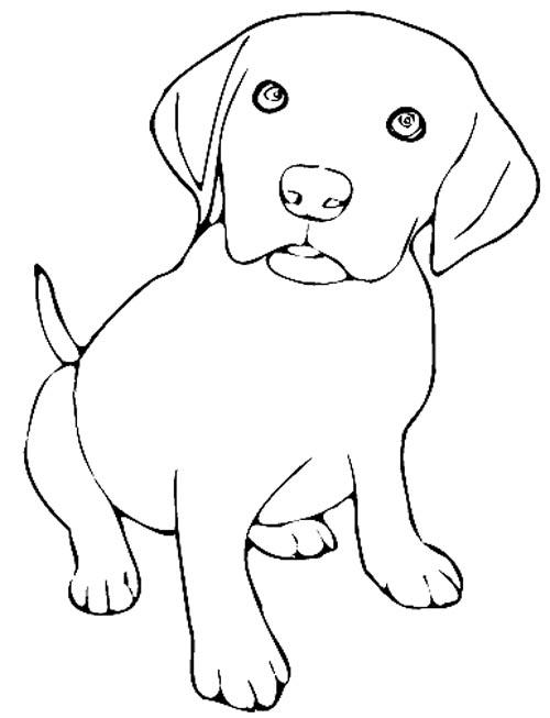Malvorlage Gratis Ausmalbilder Hundewelpen